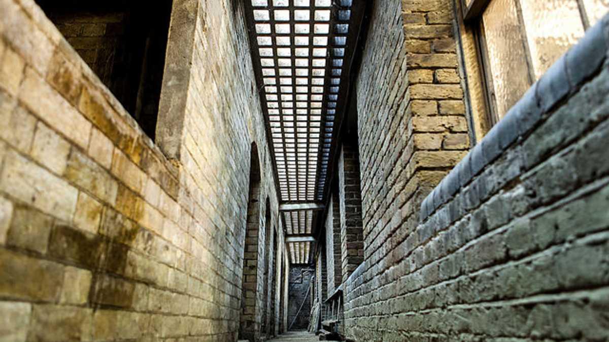 The Corridor & The Workshop