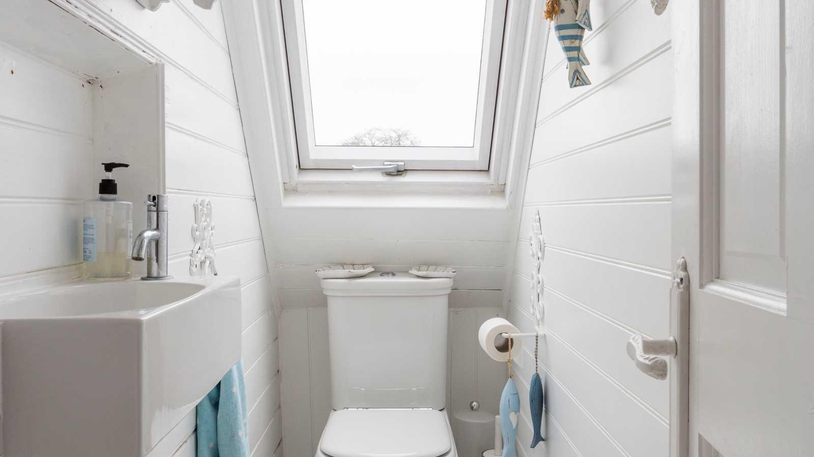 Attic toilet